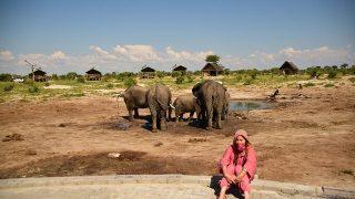 ゾウと一緒に、水着でグラビア撮影?エレファントサンズロッジ。