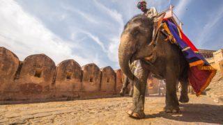 インド好き女子がおすすめするインド旅行の必見スポット!