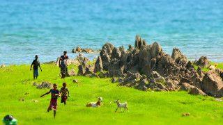 人生の中で一番○○を見た日 inチズムル島